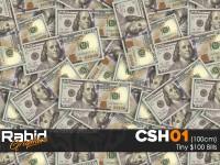 Tiny $100 Bills (100cm)