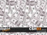 Small $100 Bills (50cm)