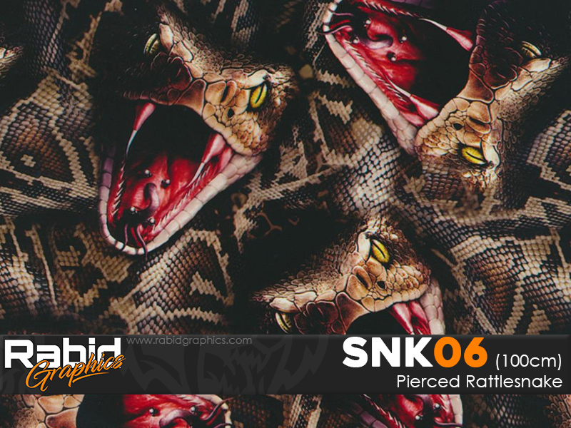 Pierced Rattlesnake (100cm)