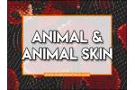 Animal/Animal Skins