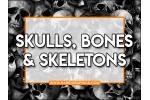 Skulls, Bones & Skeletons